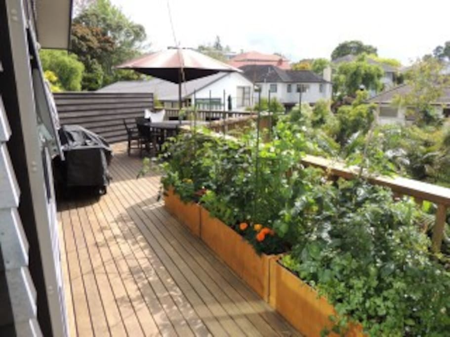 Part of the deck and verandah with veggie garden - full afternoon sun