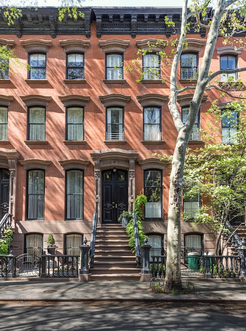 Tree Lined Block with Brownstones