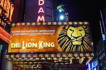 Broadway Lion KIng Musical couple of minutes away