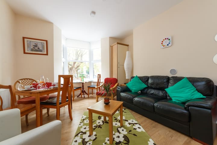 Beautiful Apartment with WiFi - Drumcondra