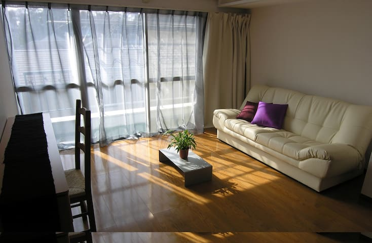 Cute sunny Apt with View near Art, Culture, Park - Musashino-shi