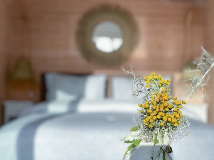 Bed & Breakfast aan Ouddorp strand- VACAY Cascara