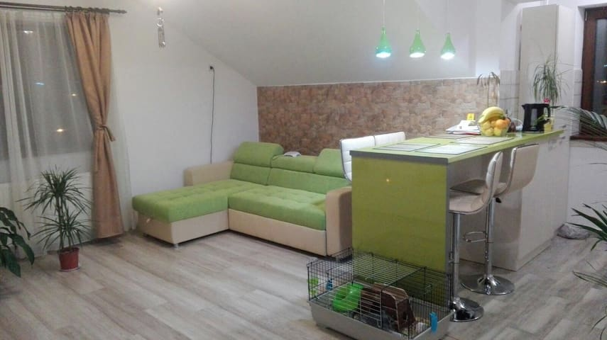 Cosy,positive,fengshui - 1 bed in residential area - București - Lägenhet