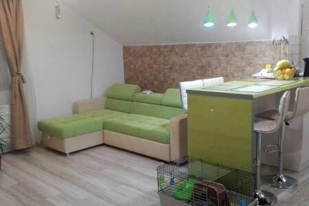 Cosy,positive,fengshui - 1 bed in residential area - București - アパート