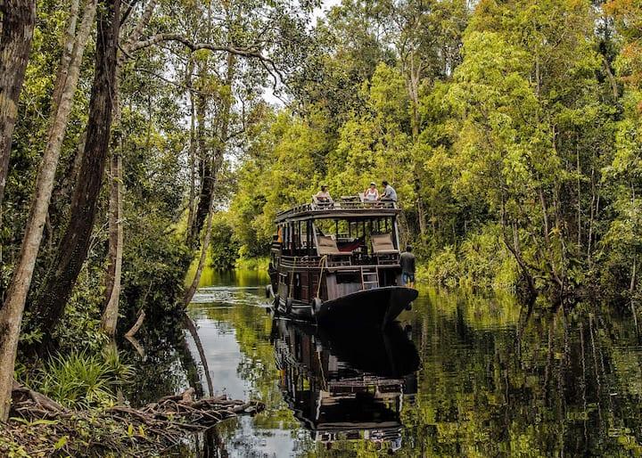 """""""Belantara""""—Humble Luxury Tanjung Puting Houseboat"""