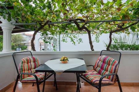 Appartement Au bord de mer, Studio, 100m du centre, à Lopar - île de Rab, La terrasse