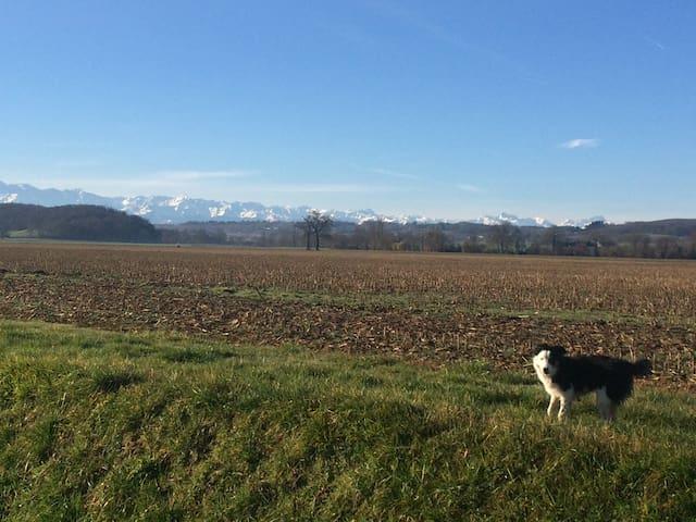 La belle vue sur les Pyrénées