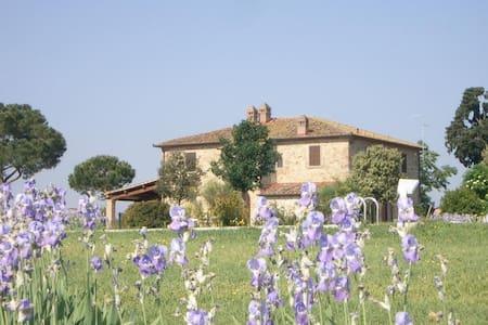 CASA ULIVETO - Castiglion fiorentino - Villa