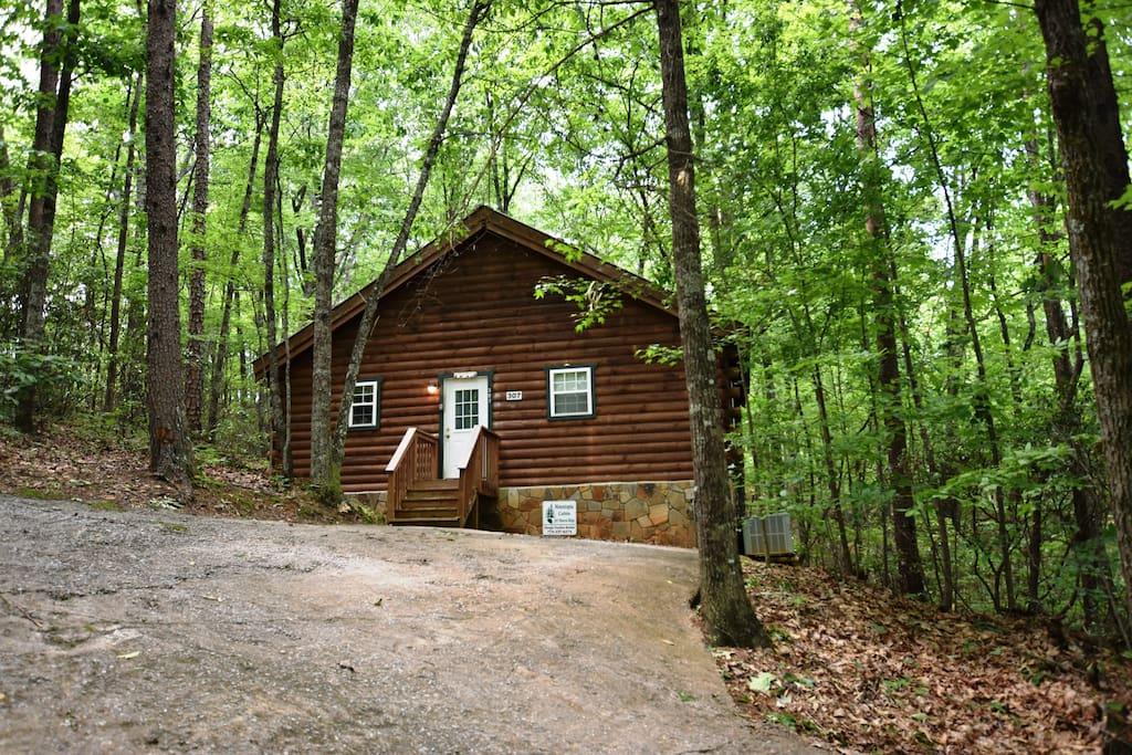 Mountopia cabin romantic escape pet friendly for Pet friendly colorado cabins