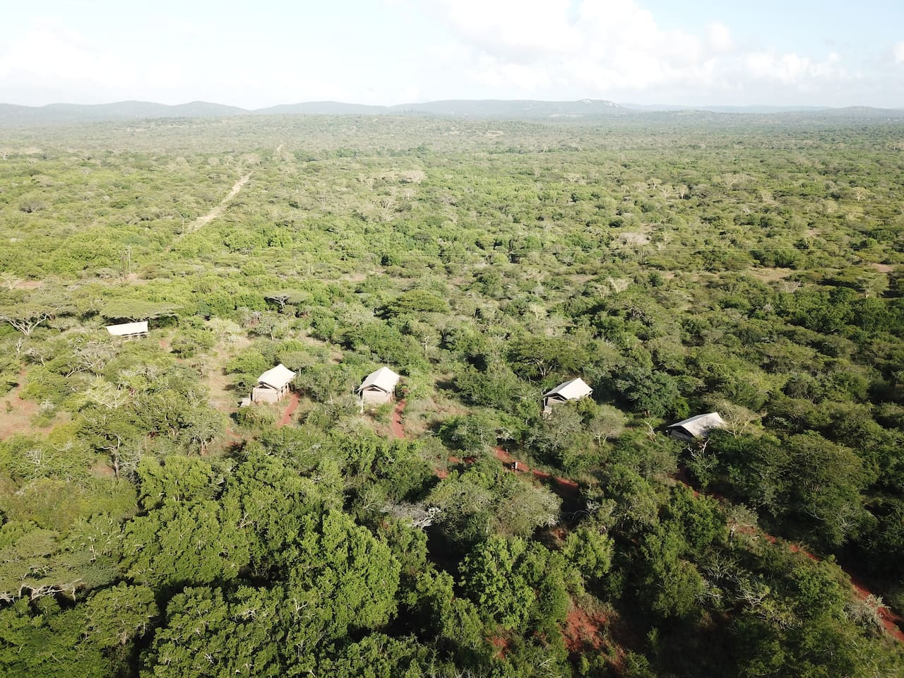 Zululand Lodge - aerial view of tented en-suite rooms
