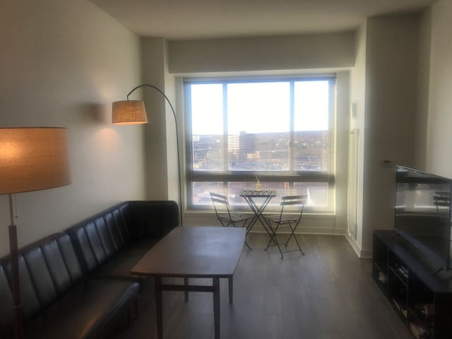 Luxury Apt, downtown, New Haven