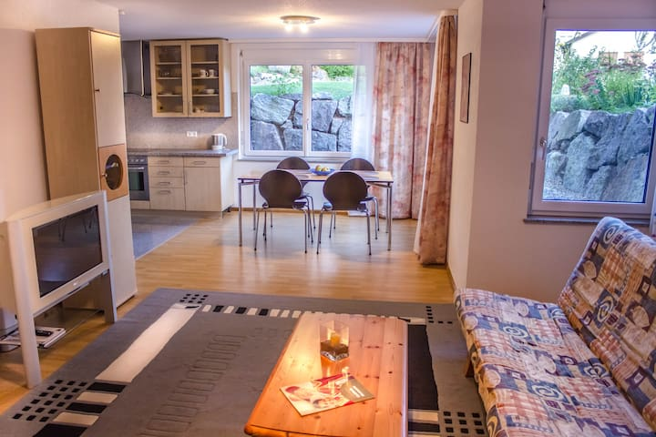 Bright apartment in Bad Säckingen - Bad Säckingen - アパート