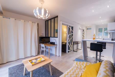 Appartement Trespoey vue Pyrénées
