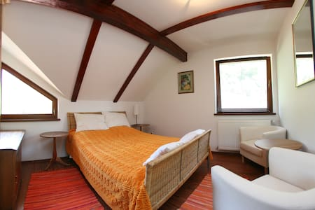Private Bedroom 2 in Vila Anastasia - Săcărâmb - 別荘