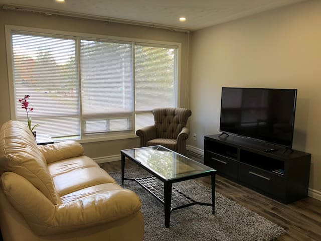 Newly renovated raised bungalow in Waterloo