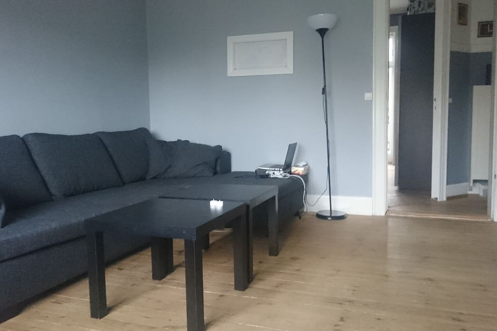 livingroom sofa, remove cushions, comfortable for sleeping.