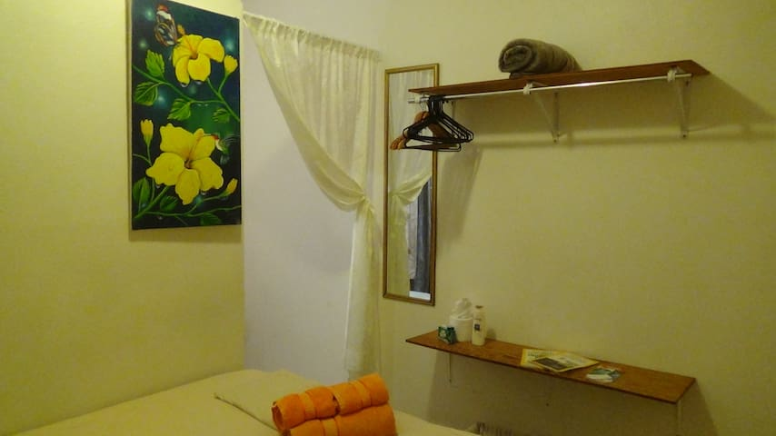 Earth Room at Hacienda Tropical Guest House - Belmopan
