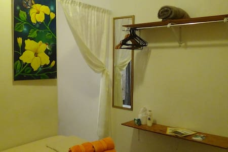 Earth Room at Hacienda Tropical Guest House - Belmopan - Guesthouse