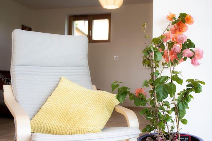 Le confort et la luminosité du salon - Comfort and light in the living room