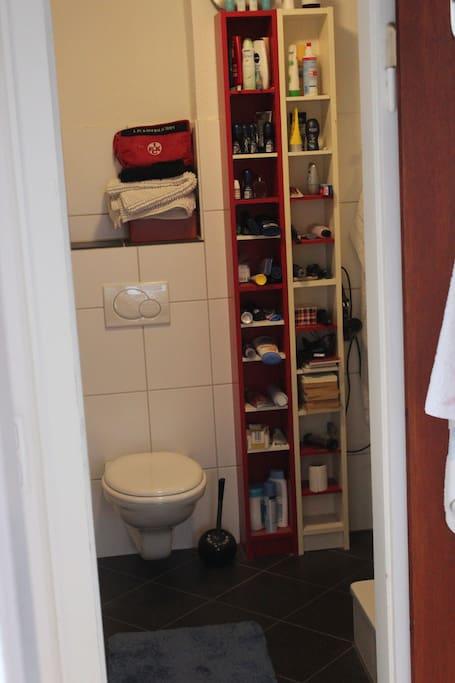 Badezimmer (Toilette, Dusche, Waschbecken)