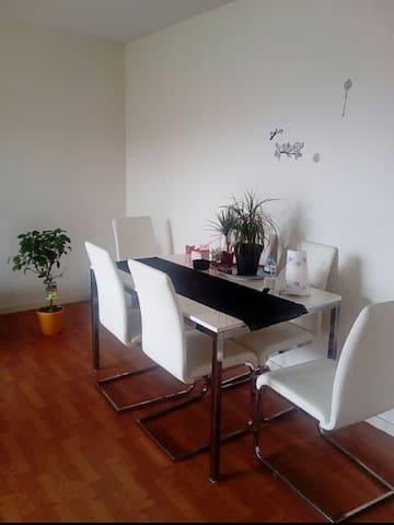 Grand t3 calme lumineux et spacieux - Toulouse - Apartamento