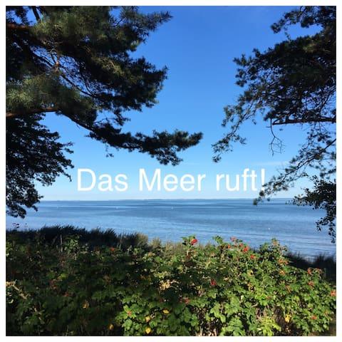 """Gästehäuschen  """"Kleine Auszeit"""" - Greifswald - Bungalow"""
