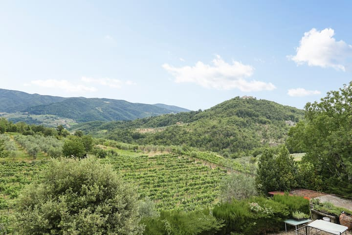 Chianti landscape from living room.