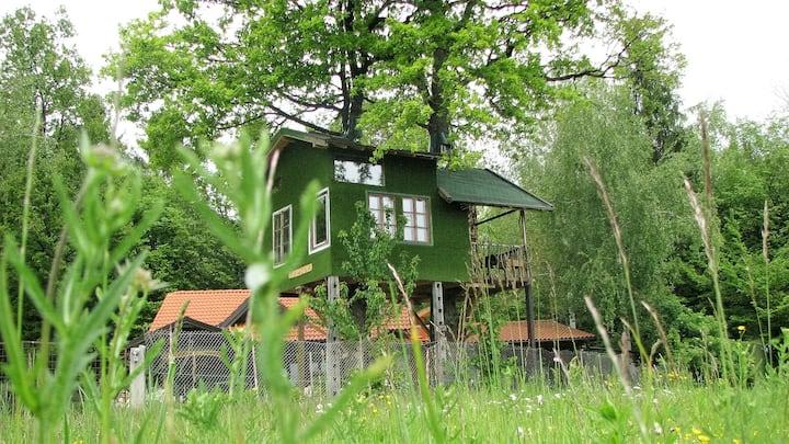 "Fairytale tree house "" Ramona ""and  beautiful cave"