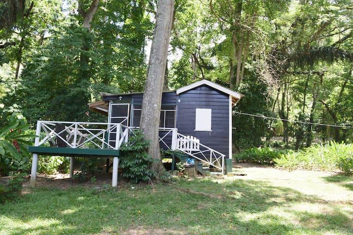 Man-O-War Bay Cottage # 6  (1-Bedroom)