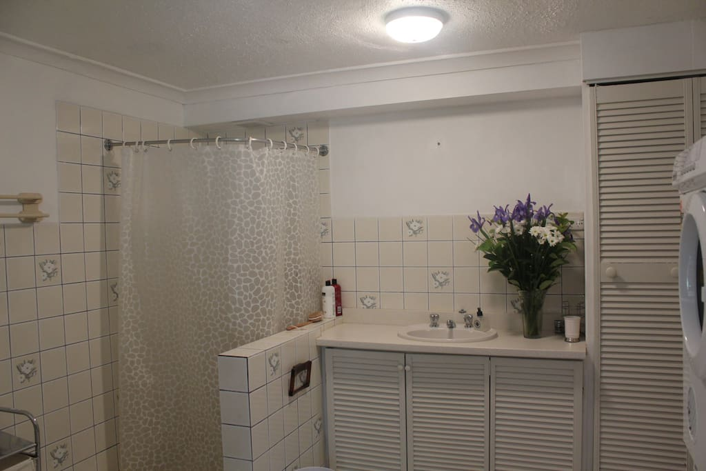 Shower, Toilet and Laundry