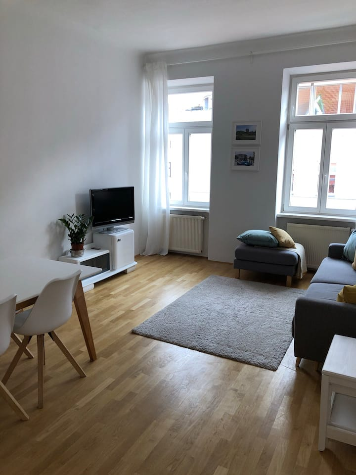 Fully Equipped Apartment in the Heart of Vienna