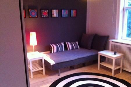 Værelse på 15 m2 i gammel villa i Charlottenlund - Villa