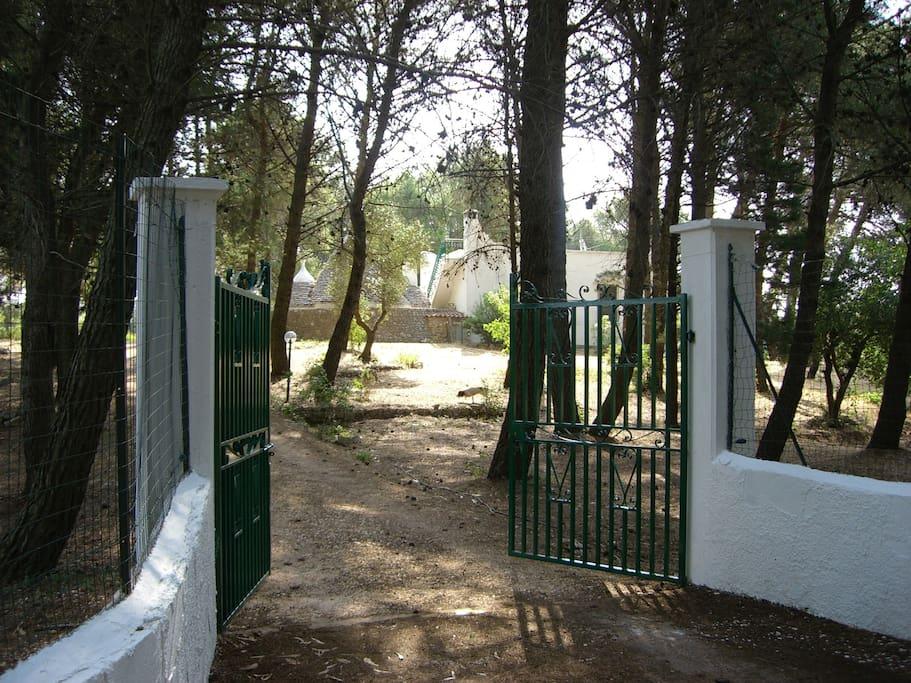 Welcome to Casa Pietra