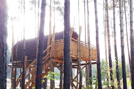 Baumhaus mit Seeblick - Senftenberg - Домик на дереве