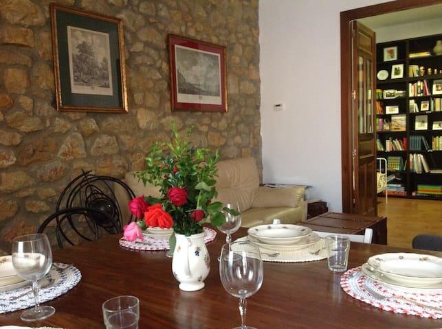 Marquesa, 10. Vivienda del siglo XIX en Asturias. - Pola de Siero - Wohnung