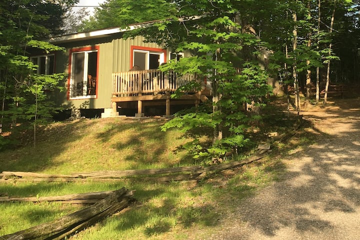 Birch Cabin: Renovated Cabin With Lovely Lake View