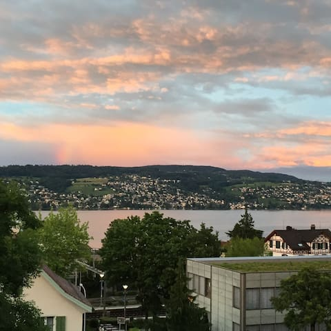 Cozy apartment with great view - Rüschlikon