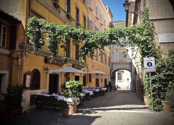 Large and nice room in magic Trastevere