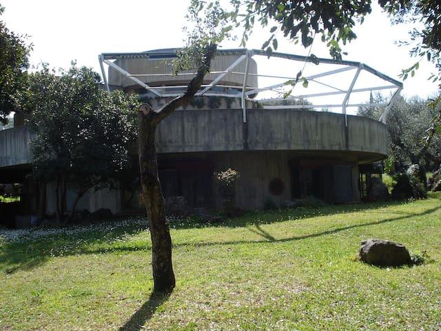 Villa nell'uliveto vicino al mare - Ansedonia - Villa