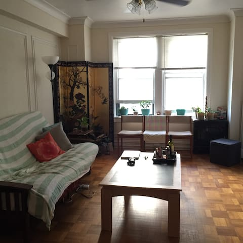 Cozy room in the Heart of the City! - St. Louis - Lejlighed
