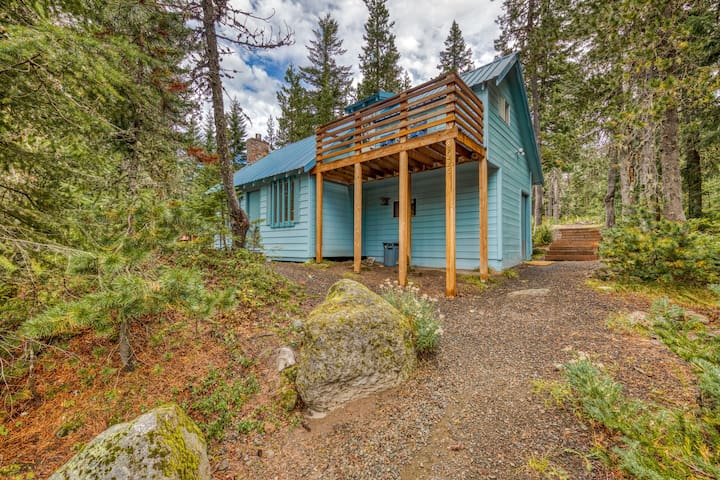 Charming dog-friendly cabin close to ski slopes and town!