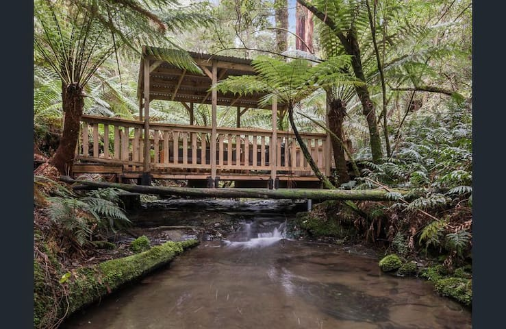 Take a picnic and enjoy a break at the private Forest Pavilion, suspended over the running Creek. Enjoy lounging on the couches, listening to the sound  of the water and the birds, or splash around in the pristine waters surrounded by luscious ferns.