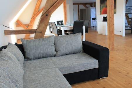 Neue große Ferienwohnung im Elsass - Artolsheim