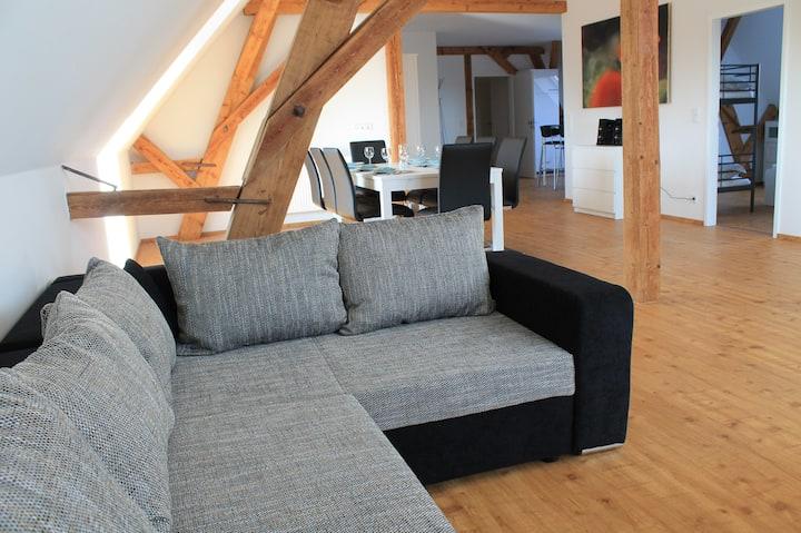 Neue große Ferienwohnung im Elsass