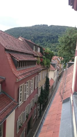 Private apartment at the heart of it all. - Heidelberg - Apartmen