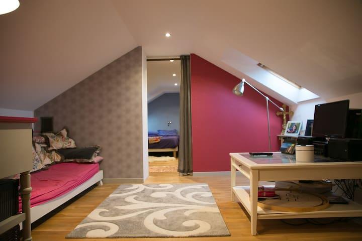2 pièces dans une maison cosy - Saint-Martin-de-Bienfaite-la-Cressonnière - Rumah