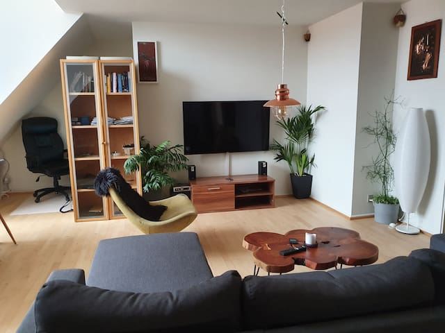 Apartment in the heart of Odense city