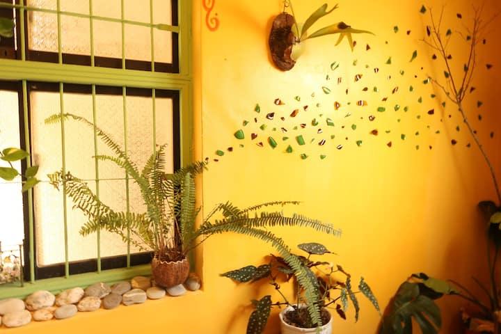 池上滿悅藝術老宅🌾早餐時光🍳Full Moon Joy hostel& breakfast🍂