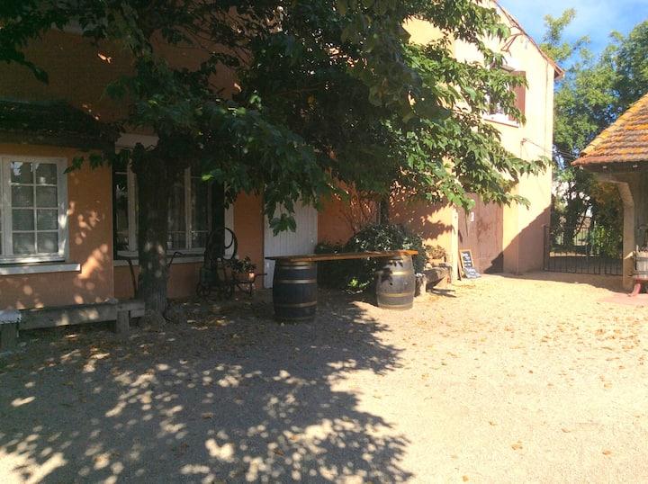 Appartement dans un vignoble- Domaine de la Barthe