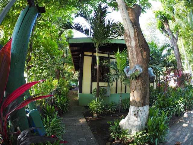 """Ocean front rustic house """"El Ceibo"""""""